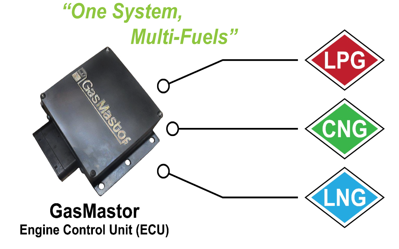 Home Gasmastor Lng Engine Fuel System Diagram One Multi Fuels2